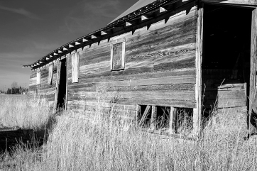 Converting the image to black and white played well on the old barn wood and made the grain really pop.